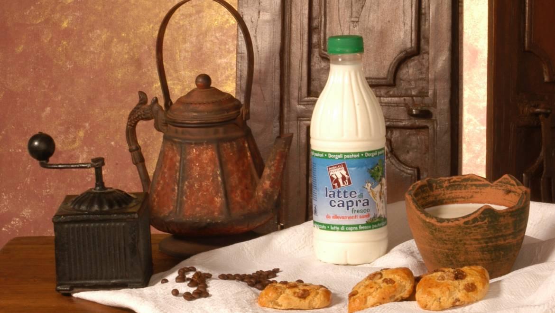 Latte fresco di capra